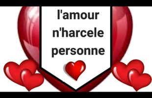 L'AMOUR n'harcele personne – Kevin Gall